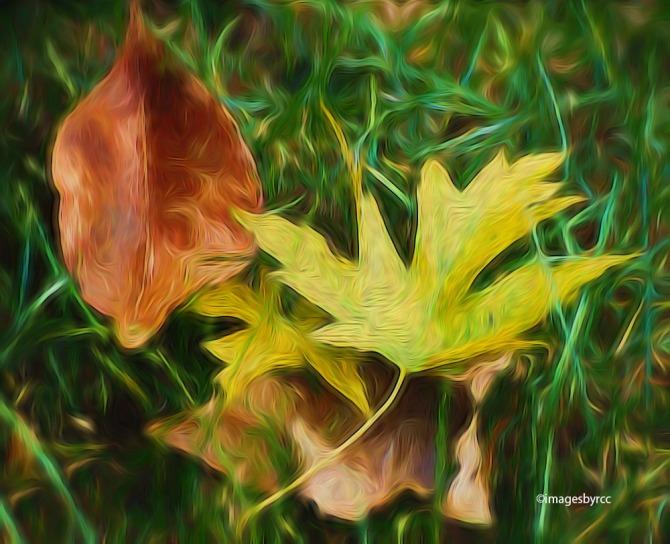 fallen-leaves-2_edward-hopper