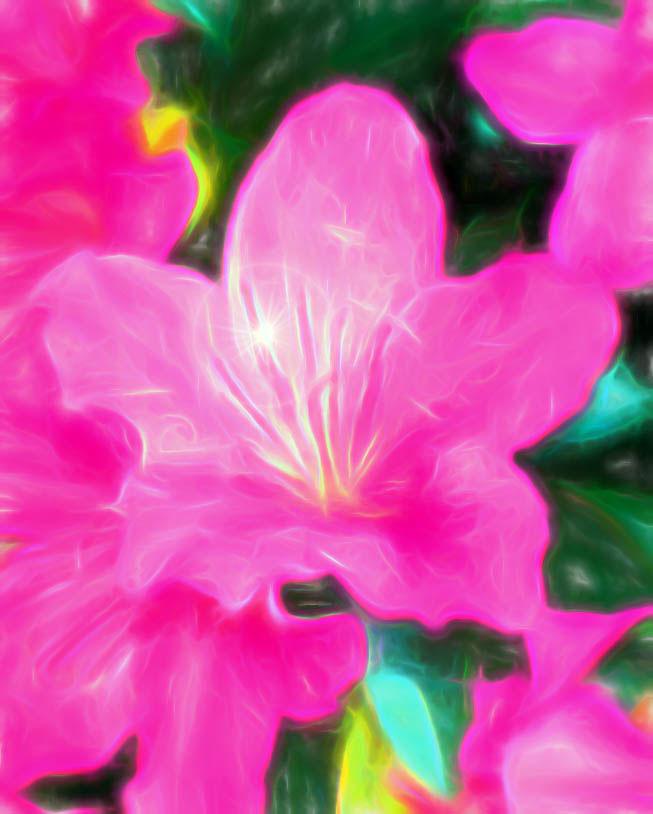 sparkling-azalea